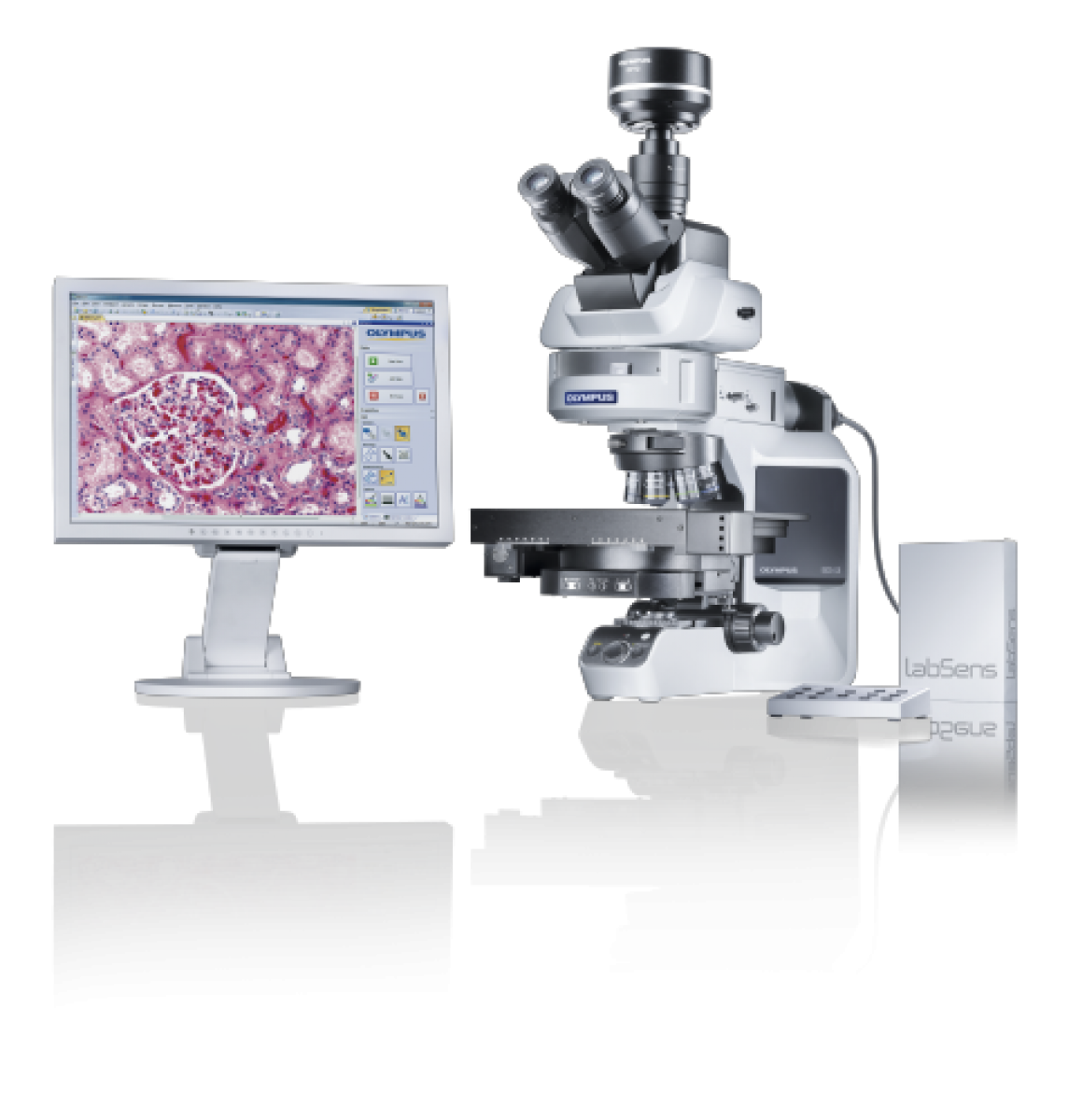 Microscope OLYMPUS CX43 -3