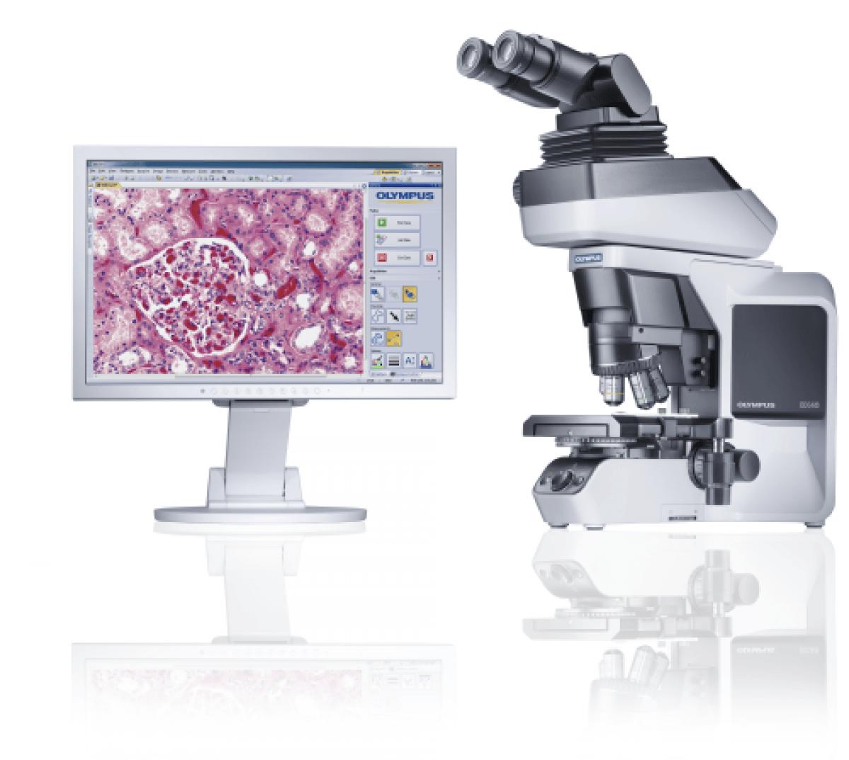 Microscope OLYMPUS BX46 -2