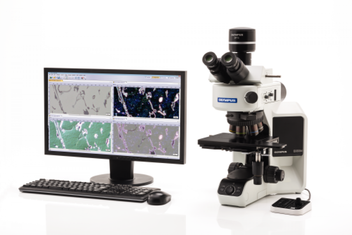 Microscope OLYMPUS BX53 -2