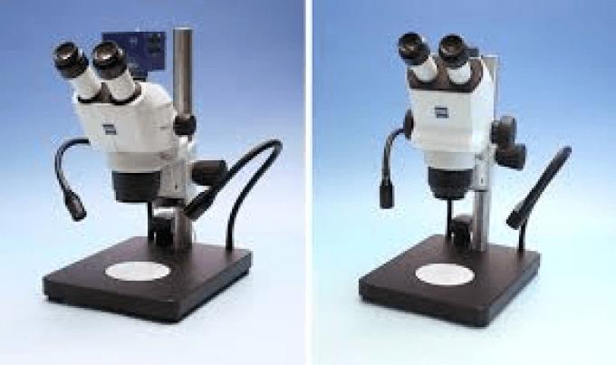 Stéréomicroscope Stemi 508