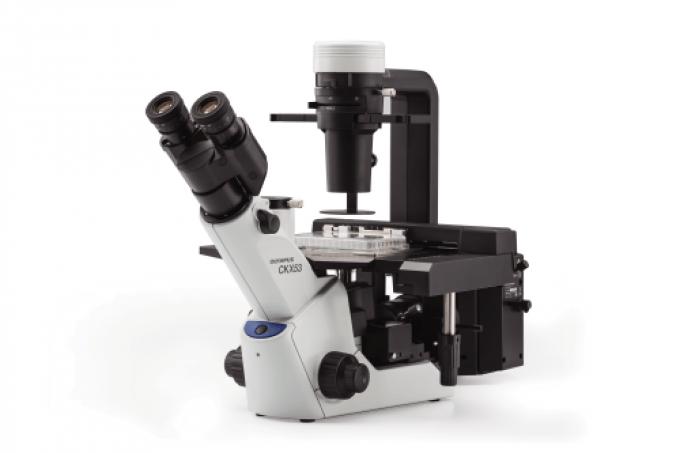 Microscope OLYMPUS CKX53