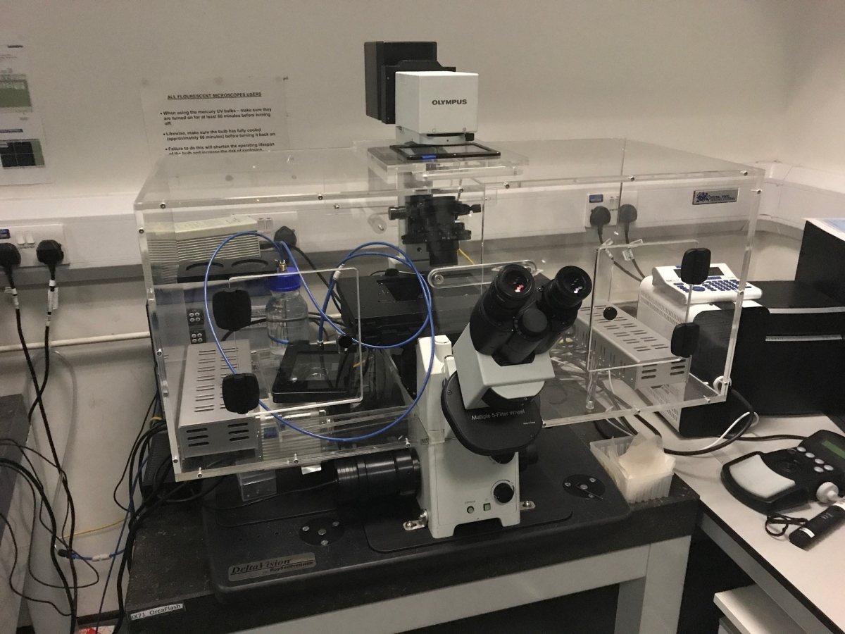 Système d'incubation pour  microscope OLYMPUS -3