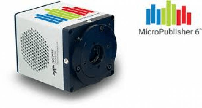 Caméra MicroPublisher 6