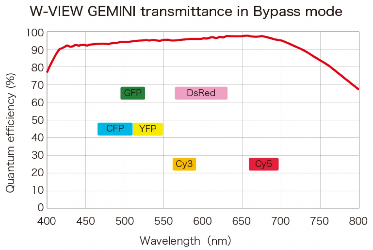 W-VIEW GEMINI Image Splitting Optics -2